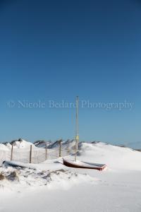 ©NicoleBedardPhotography_Blizzard13_Chatham-11